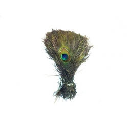 200 x 10-15 inch peacock eyes wholesale