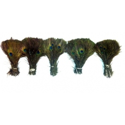 500 x 10-15 inch peacock eyes wholesale