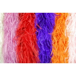 Ostrich Feather Boa 4ply - 2 yard