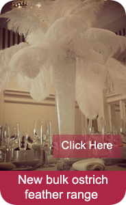 bulk ostrich feather range