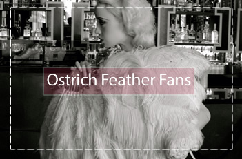 ostrich feather fans