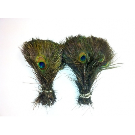400 x 10-15 inch peacock eyes wholesale