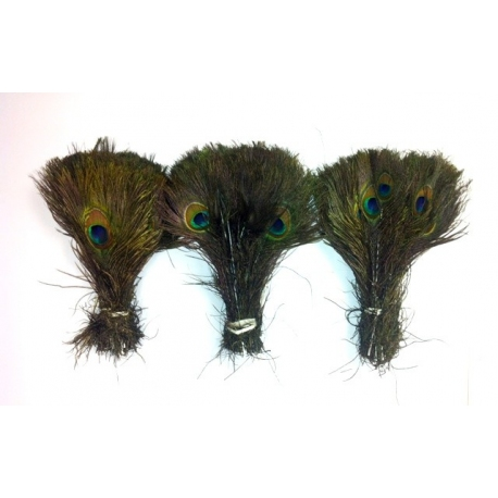 600 x 10-15 inch peacock eyes wholesale