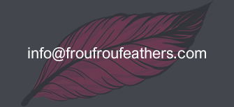 Buy Feathers by emailing for Info and Bulk price information